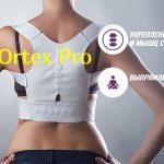 Ortex Pro – что делать, если болит спина