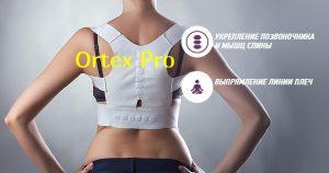 Магнитный комплекс для спины