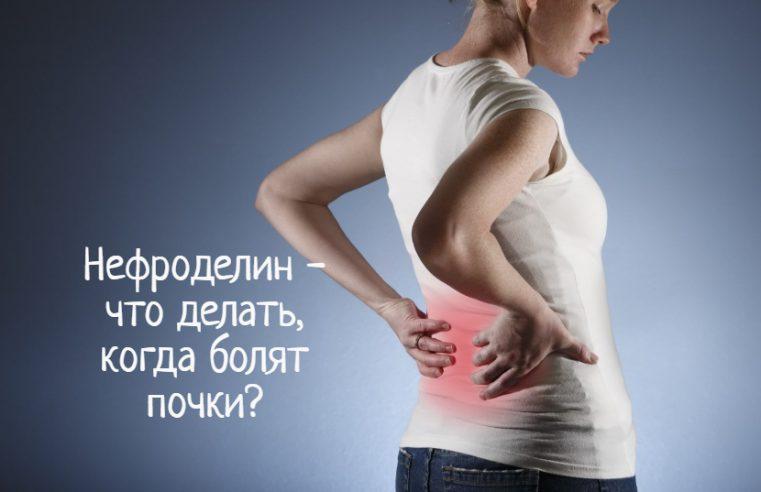 Нефроделин – что делать, если болят почки