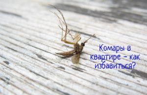 Комары в квартире как избавиться