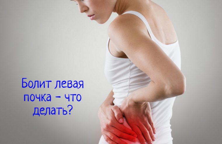 Болит левая почка – что делать в домашних условиях?