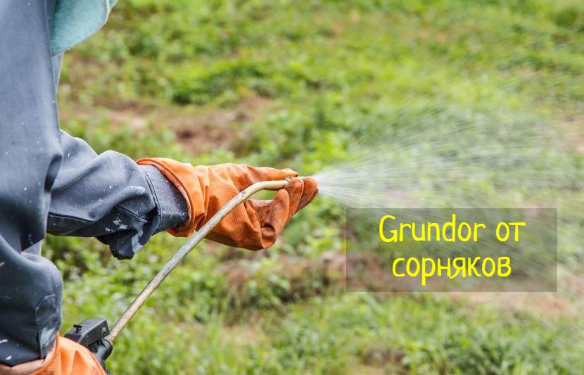 Грундор (Grundor) – что делать, как избавиться от сорняков без постоянной прополки