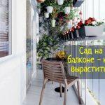 Как лучше всего посадить сад на балконе - что делать?