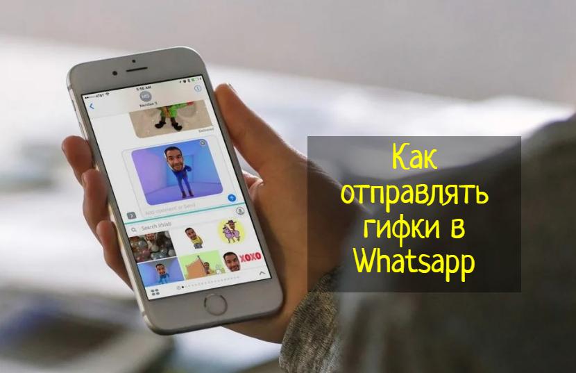Как отправлять гифки в Whatsapp — что делать?