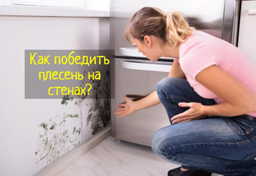 Что делать, если появилась плесень на стене в квартире или доме?