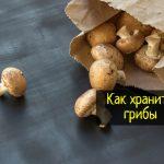 Как сохранить грибы свежими - что делать?