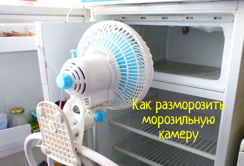 Как разморозить морозильную камеру — что делать?